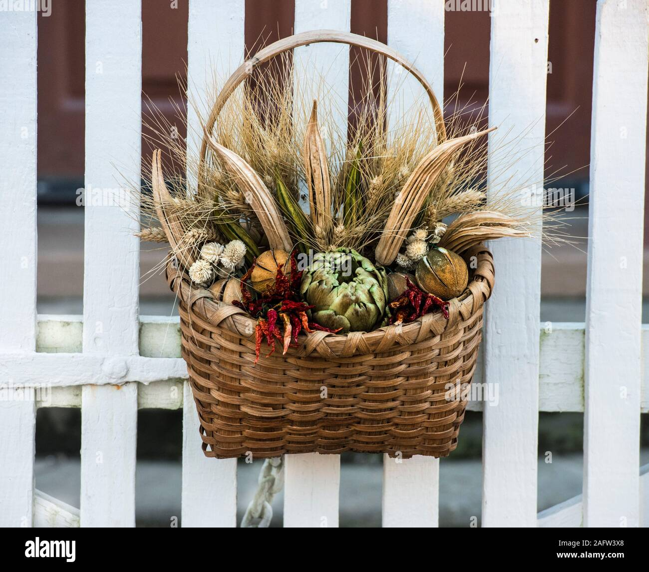 Dried flower arrangement in a wicker basket, hanging on a white picket fence gate in Colonial Williamsburg. Deck the Doors annual Wreath competition. Stock Photo