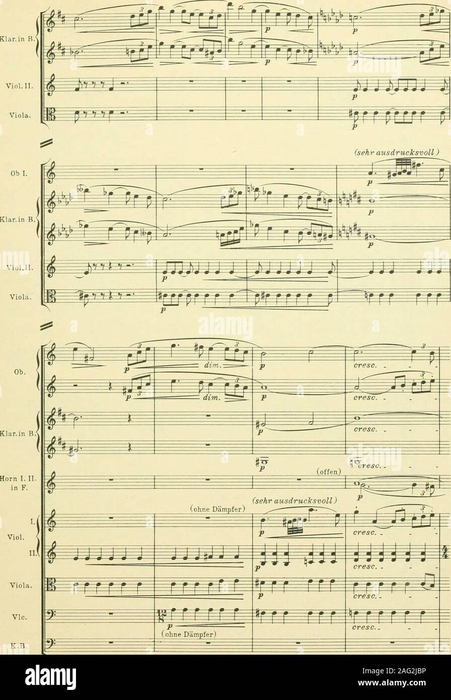 . Instrumentationslehre, von Hector Berlioz. Ergänzt und rev. von Richard Strauss. 233. Stock Photo