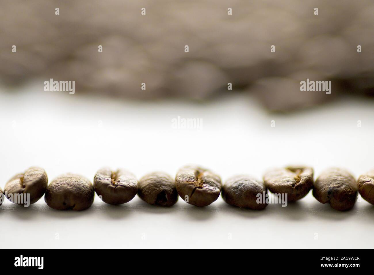 A Closeup Shot Of A Line Of Coffee Beans On A White Surface