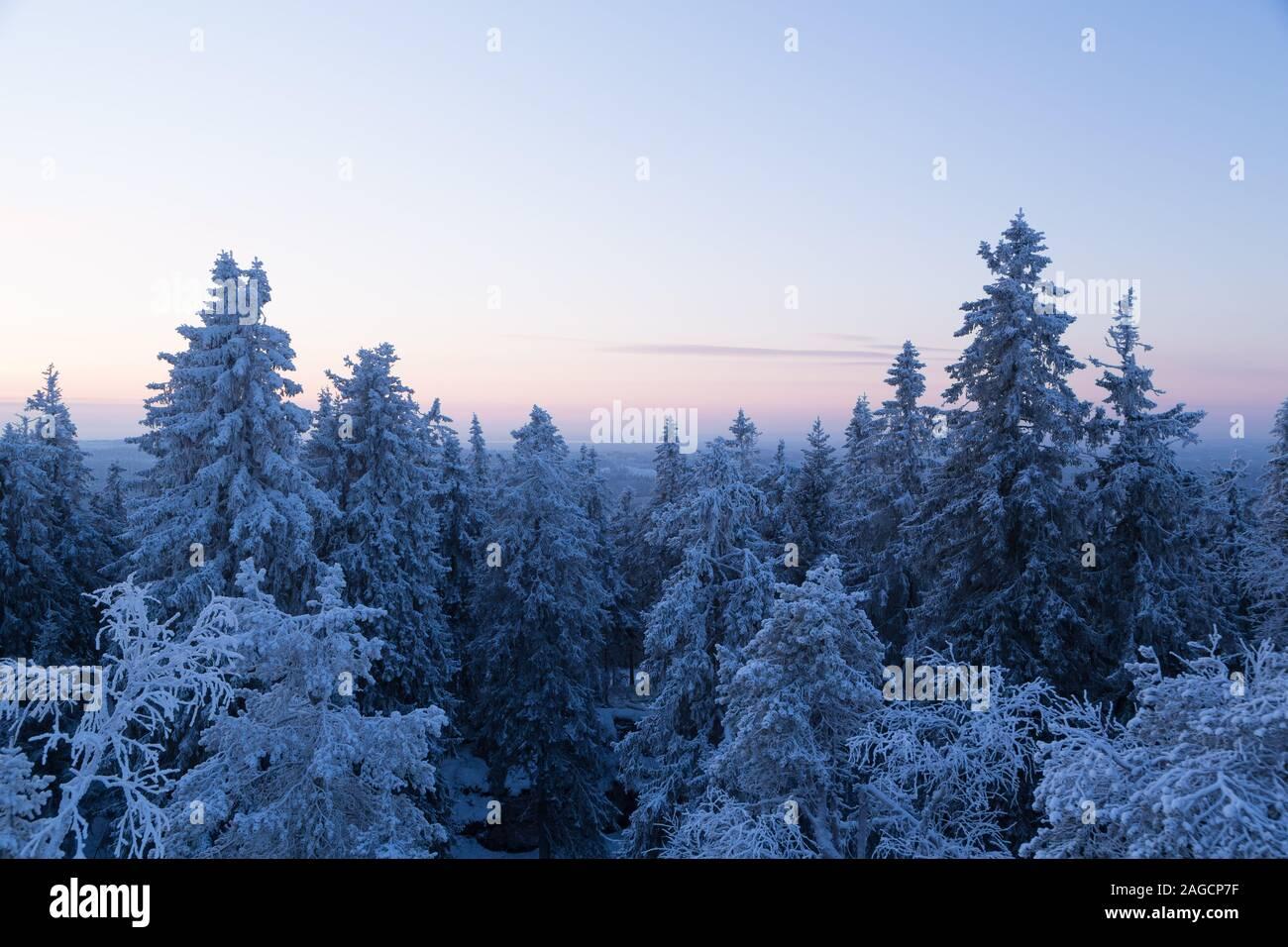 Wintery scenic vista at Koli National Park Finland Stock Photo