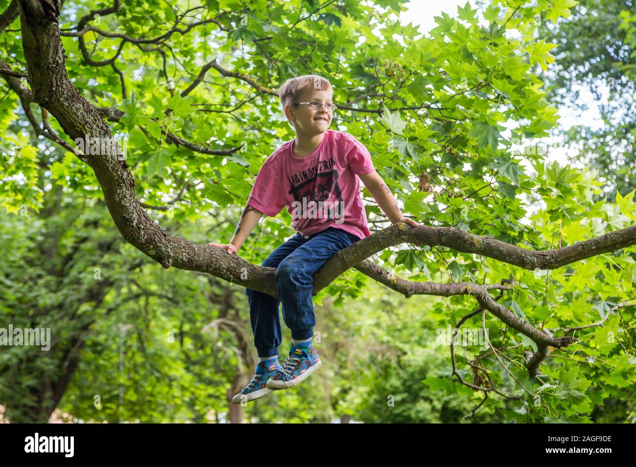 Young cute kids hanging from a tree in the summer Stock Photo