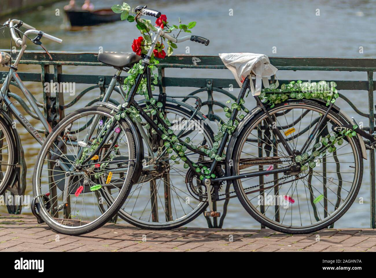 Single old bicycle with roses parked on a bridge in the inner city of Amsterdam, Netherlands Stock Photo