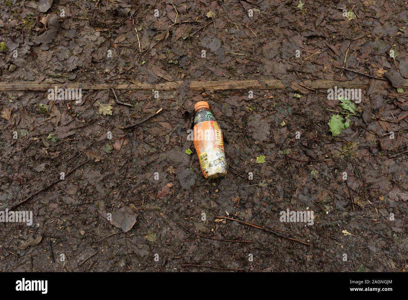 Plastic bottle thrown away on rotting leaves in countryside in burrs park bury lancashire uk Stock Photo