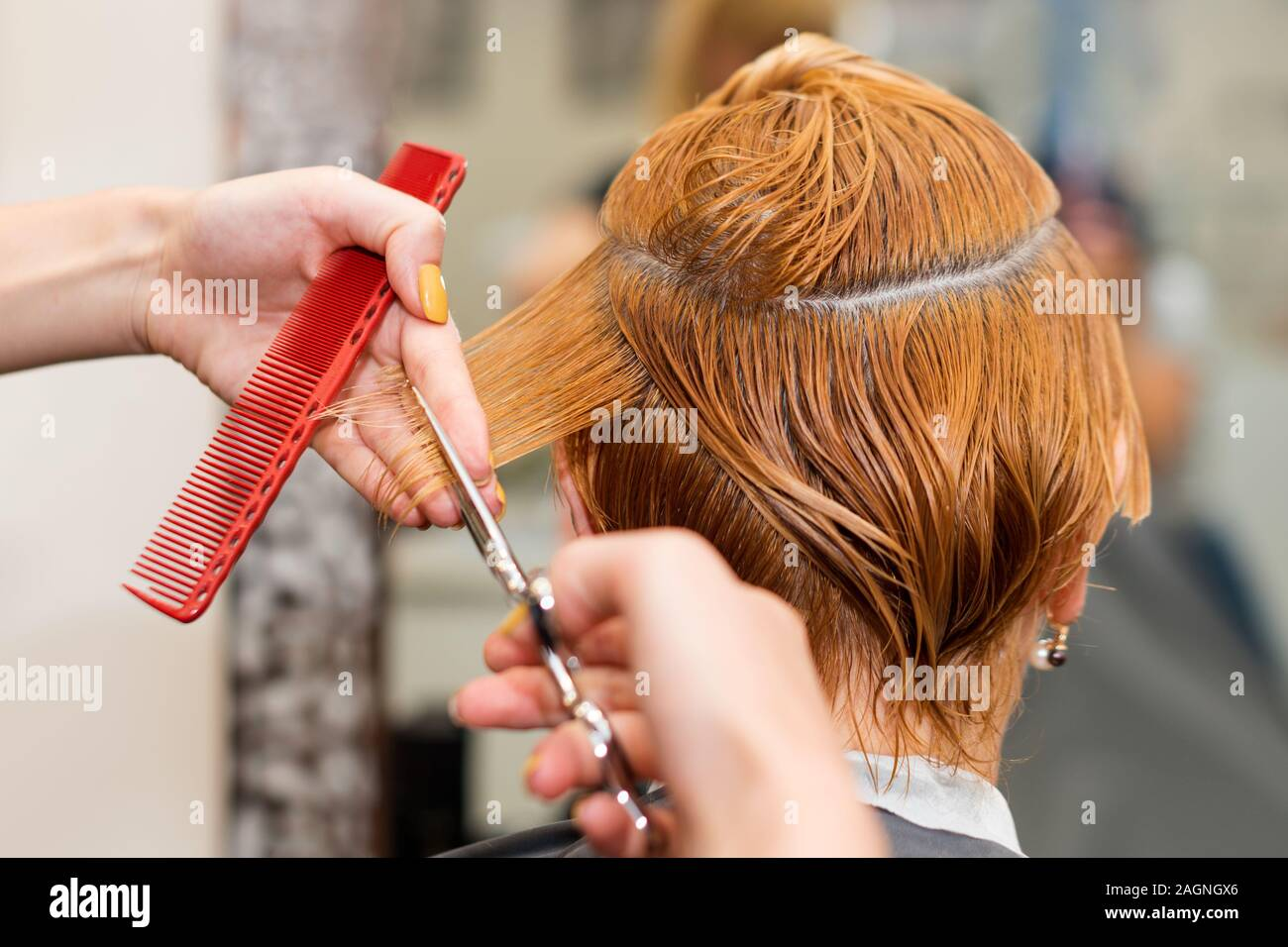Woman getting a new haircut. Female hairstylist cutting hair with
