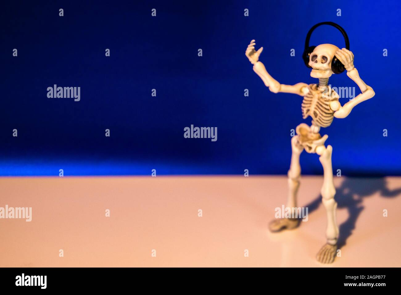 A skeleton enjoys listening to his / her music on their headphones. Taken on a blue background. Stock Photo
