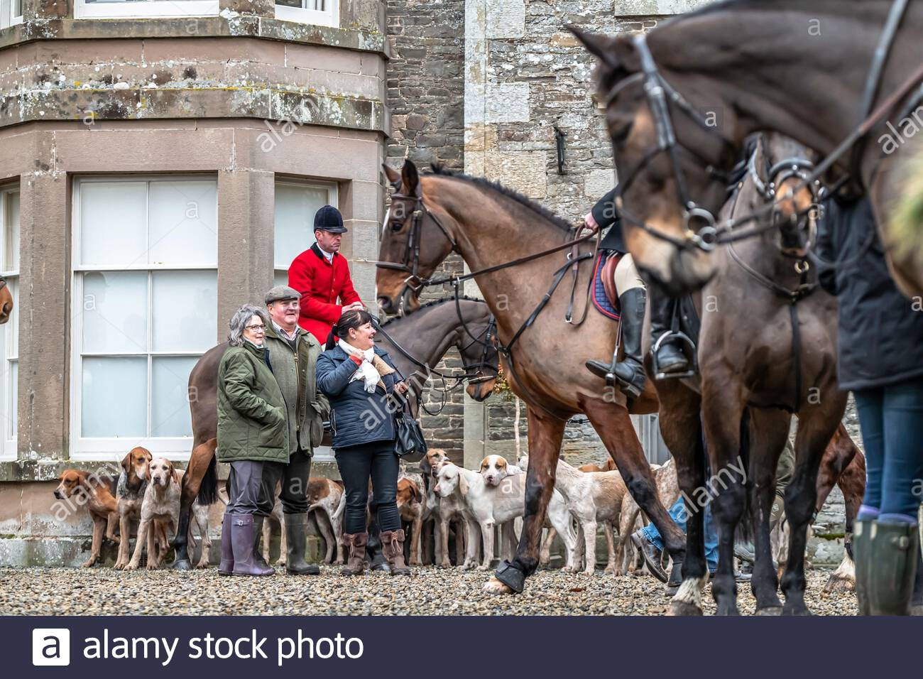 Midlem, Melrose, Scottish Borders, UK. 7th December 2019. The Zetland Hunt, which once covered most of Yorkshire, at a joint meet in the Buccleuch Hun Stock Photo