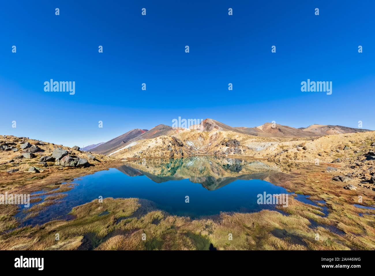 New Zealand, North Island, Clear blue sky over shiny lake in North Island Volcanic Plateau Stock Photo