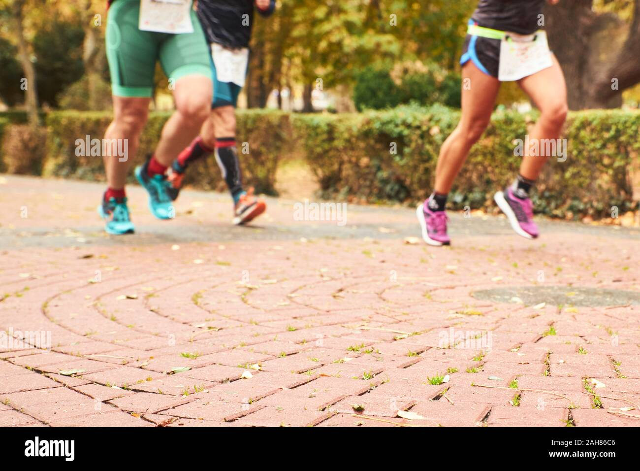 legs of runners a day's race in a park. sport concept. image with blur for background Stock Photo