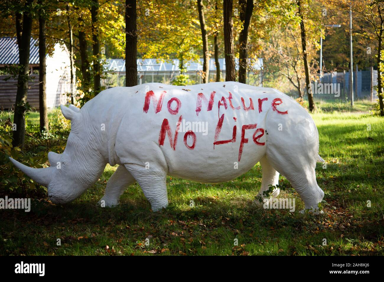 Statue off a white rhino or rhinoceros in the woodland Stock Photo