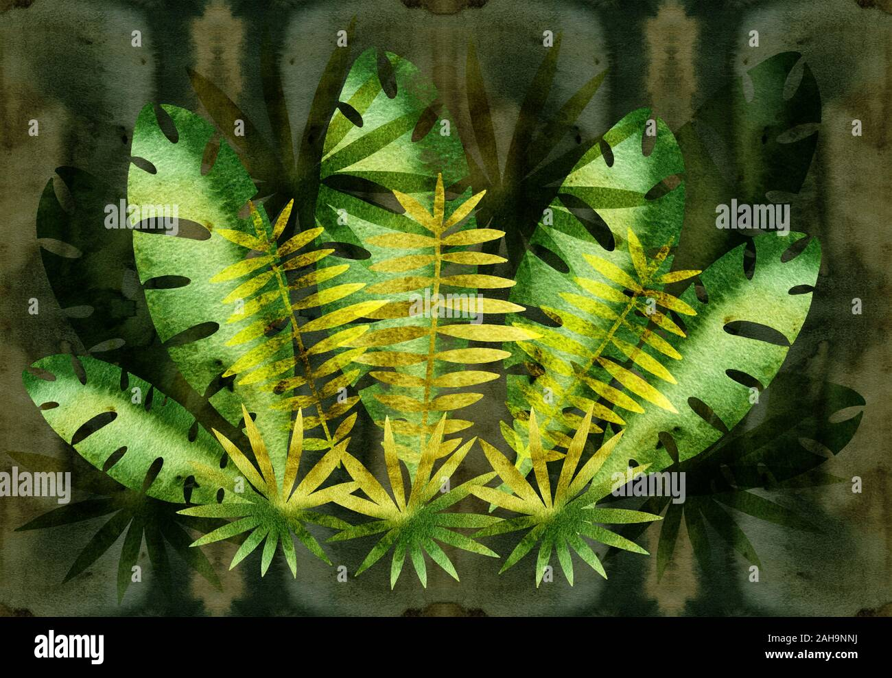 Jungle Plants Drawing High Resolution Stock Photography And Images Alamy