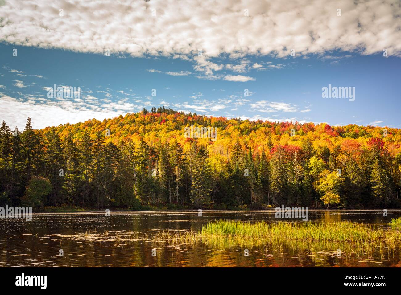 A calm river flows with colorful mountain forest foliage in the background. Stock Photo
