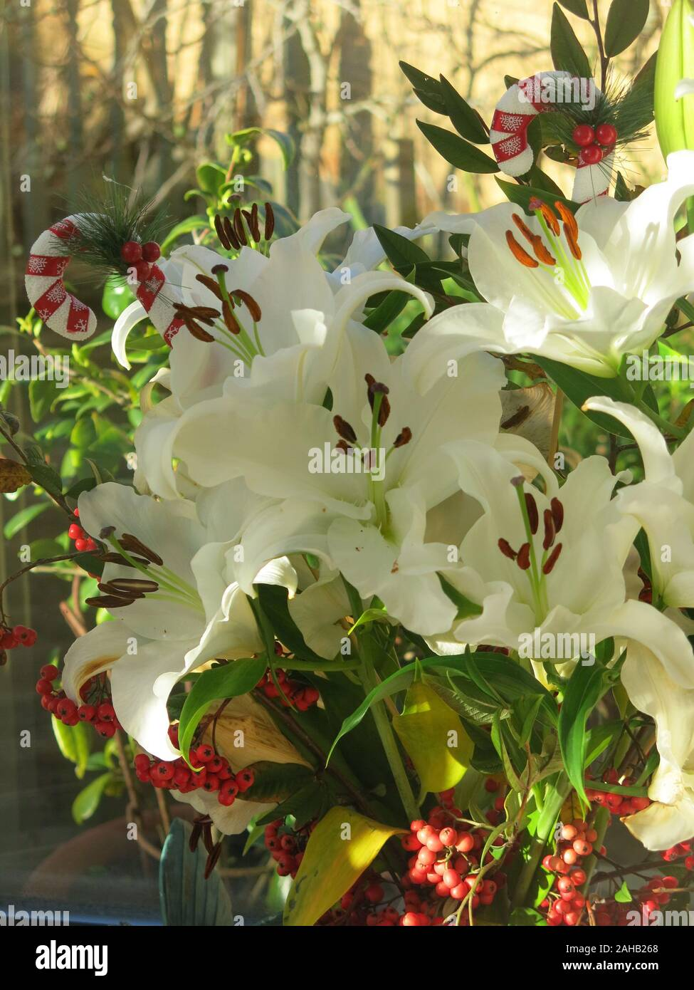 A Festive Floral Arrangement For A Windowsill At Christmas White Lilies Red Berries And Decorated Candy Canes Stock Photo Alamy
