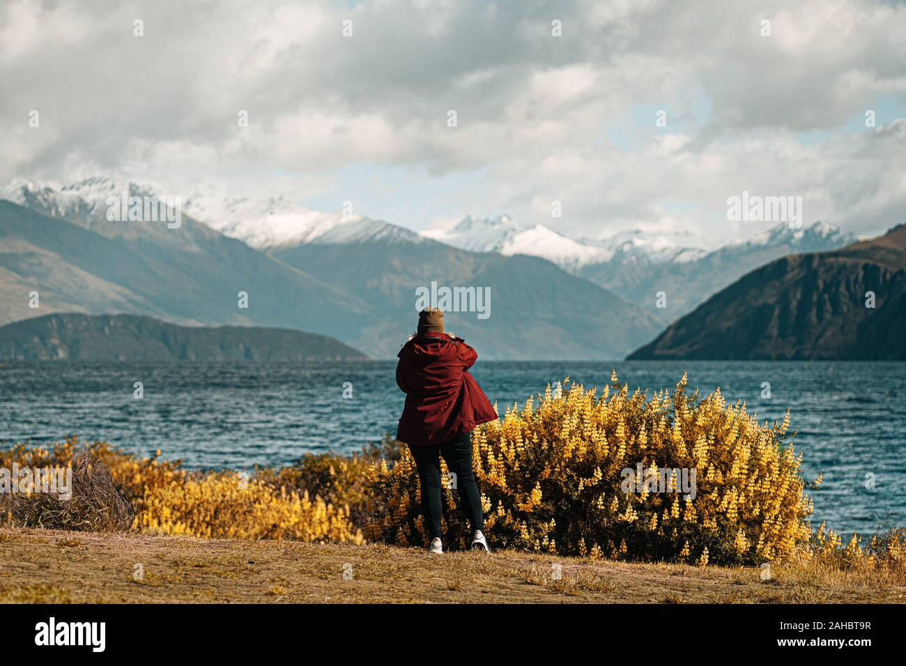 Person in front of yellow flowers with lake in background Stock Photo
