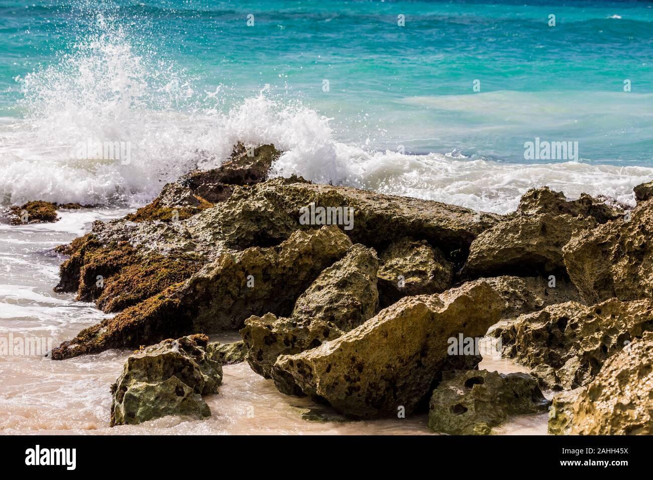 Waves crashing on a tropical beach in Barbados Stock Photo