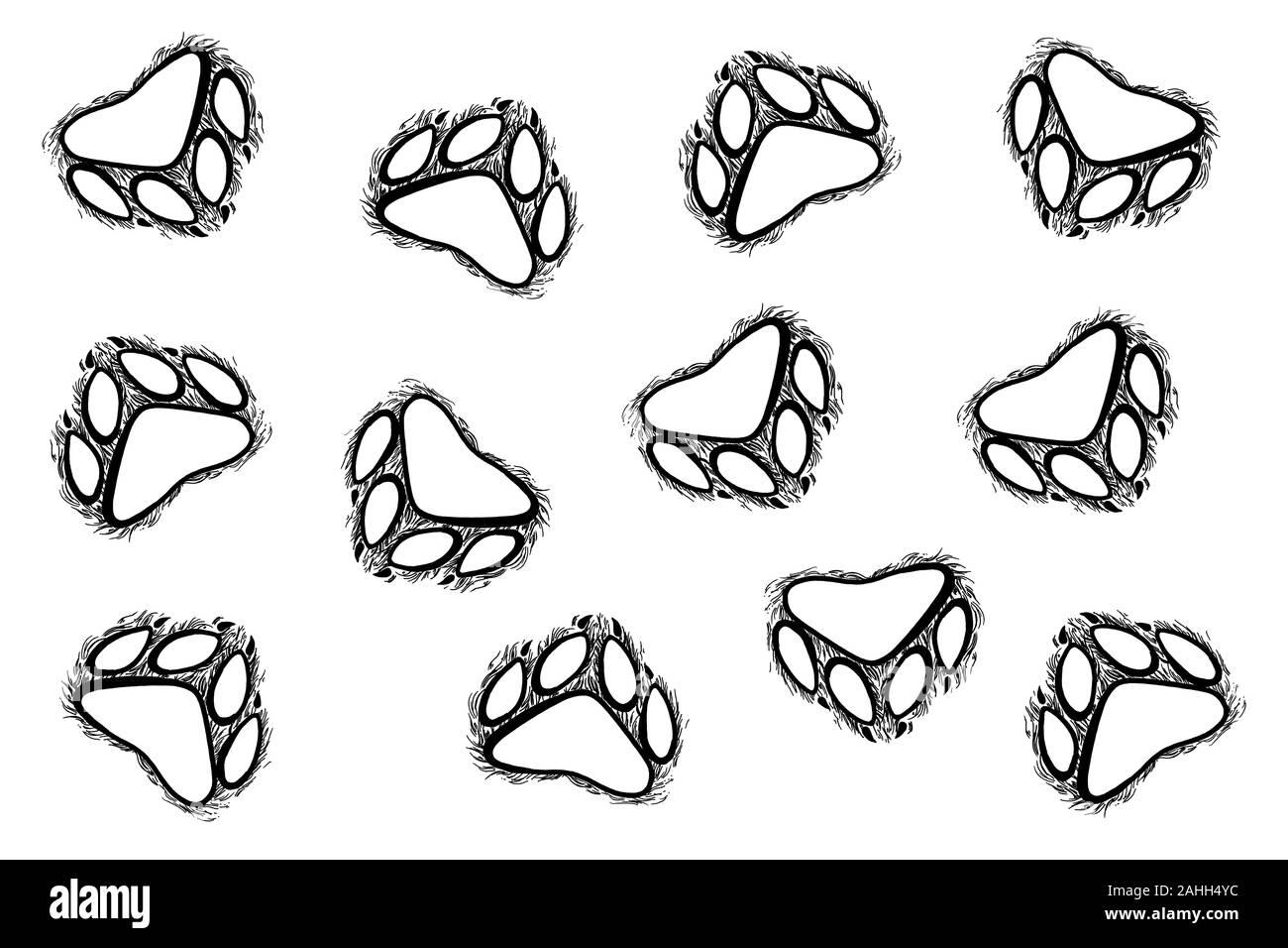Hand drawn animal footprints, sketch graphics monochrome illustration on white background (originals, no tracing) Stock Photo