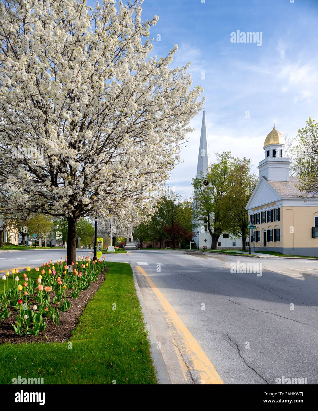 View of the Manchester Village Historic District center in Vermont during the spring with tulips and blossoming trees. Stock Photo