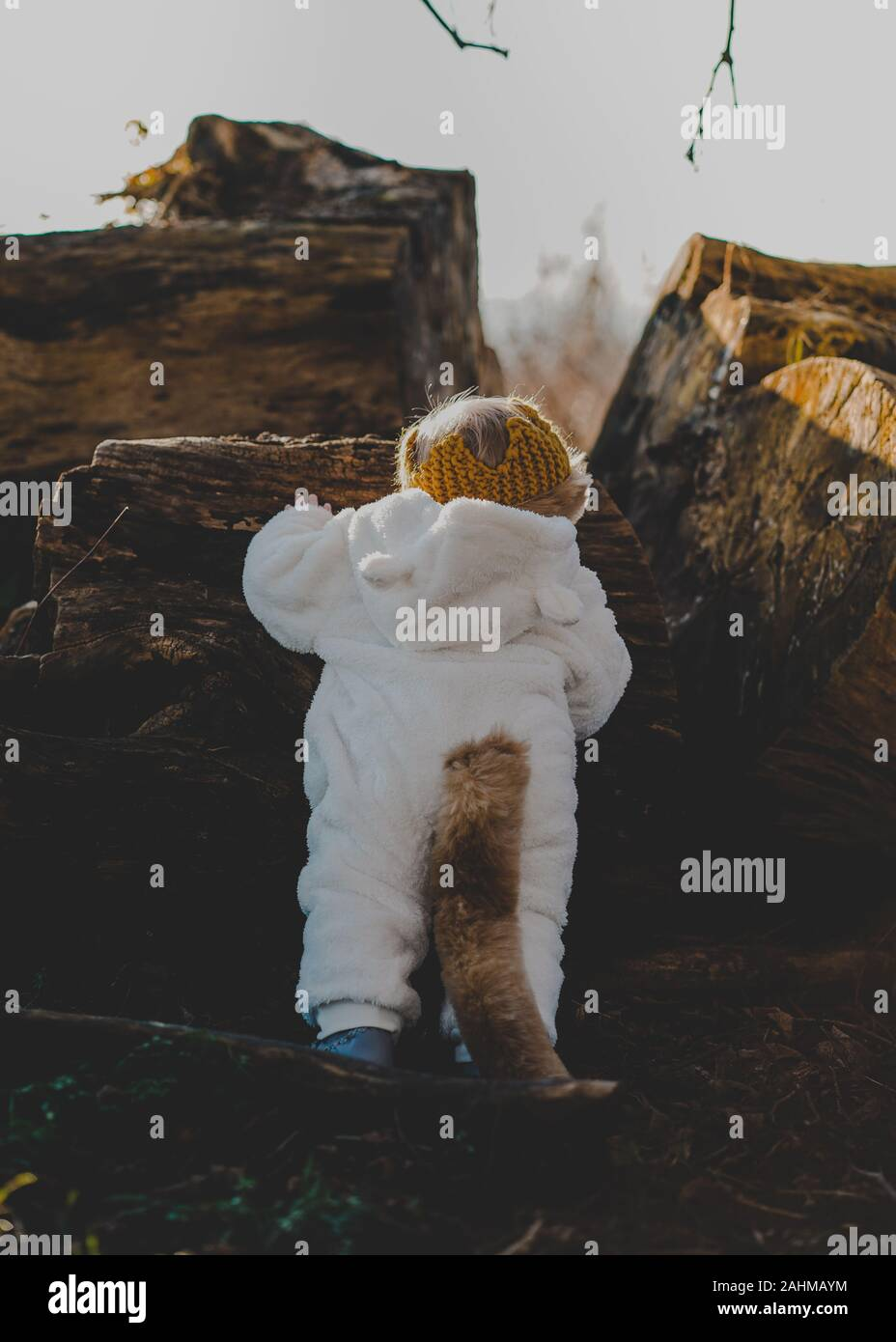 Little boy dressed as Max from Where The Wild Things Are in the woods Stock Photo