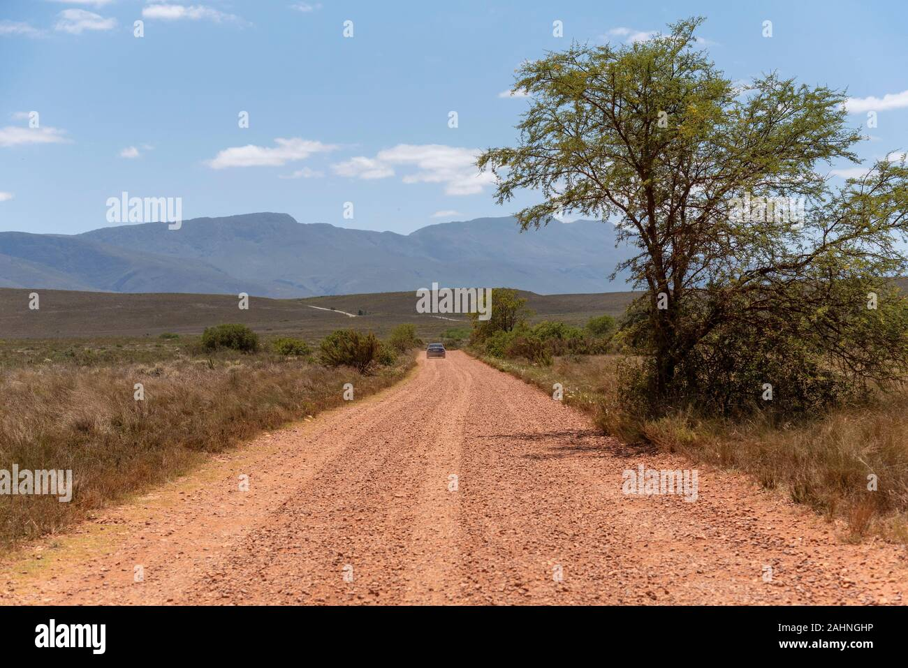 Swellendam, Western Cape, South Africa. December 2019. Dirt road heading for the Langeberg Mountains. Stock Photo