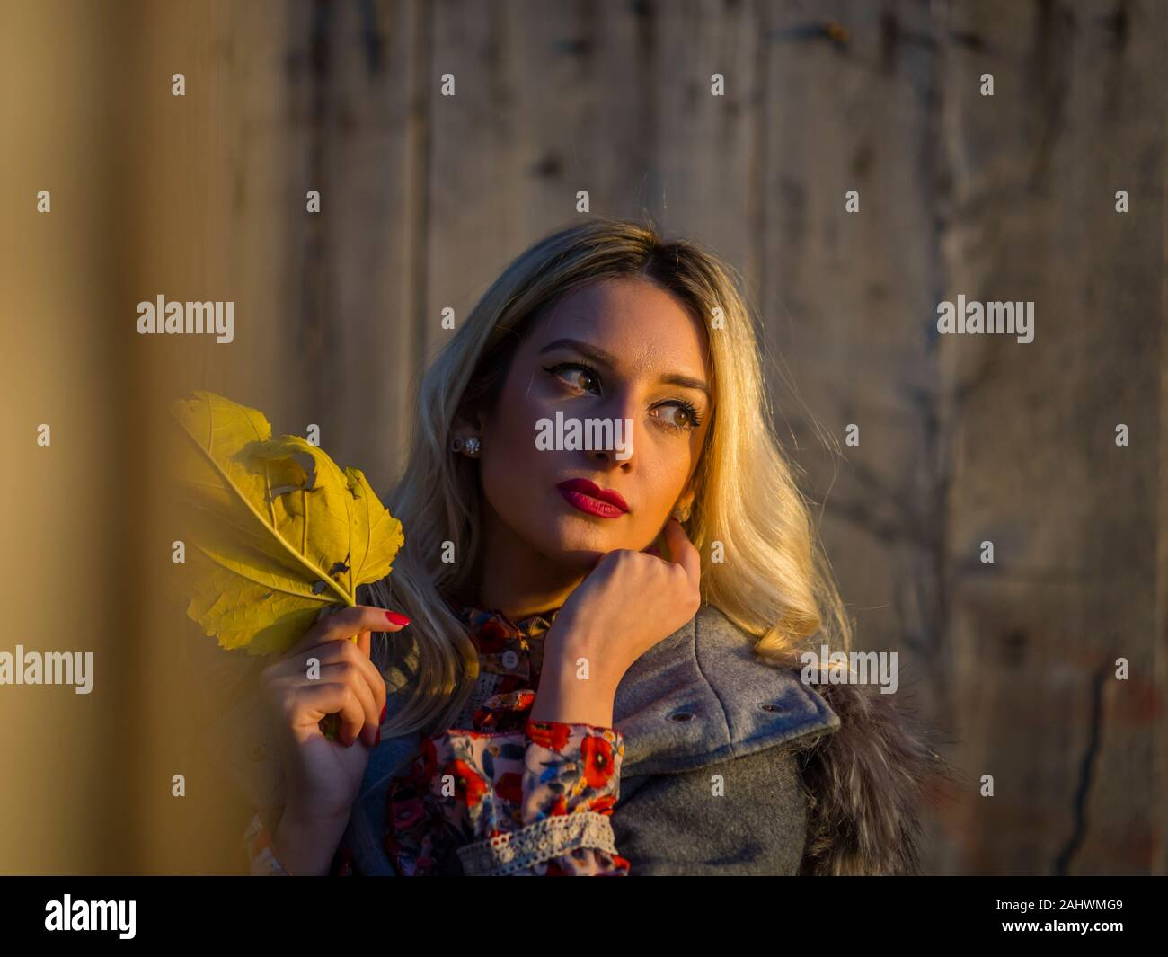Portrait head and shoulders with Autumn leaf in hand looking away aside in distance setting sun sunset Stock Photo