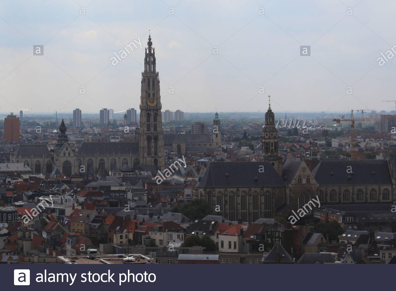Aerial view of Antwerp, Belgium. Includes a view on the Cathedral of Our Lady Onze-Lieve-Vrouwekathedraal and the St. Paul`s Church Sint-Pauluskerk. Stock Photo