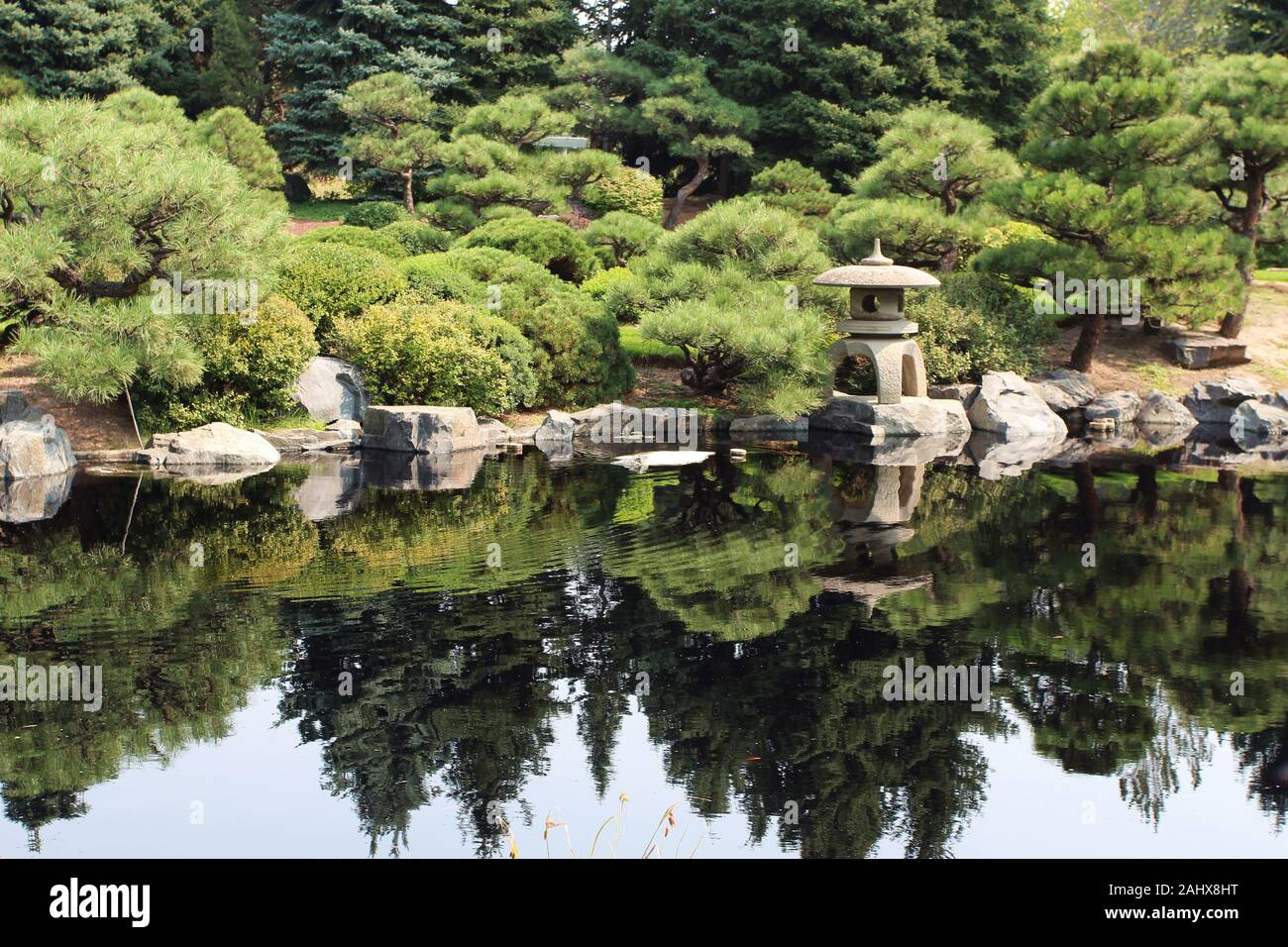 A Japanese style garden with a stone lantern and various cultivated evergreen trees next to a lake, with the landscape reflected in the water in Color Stock Photo