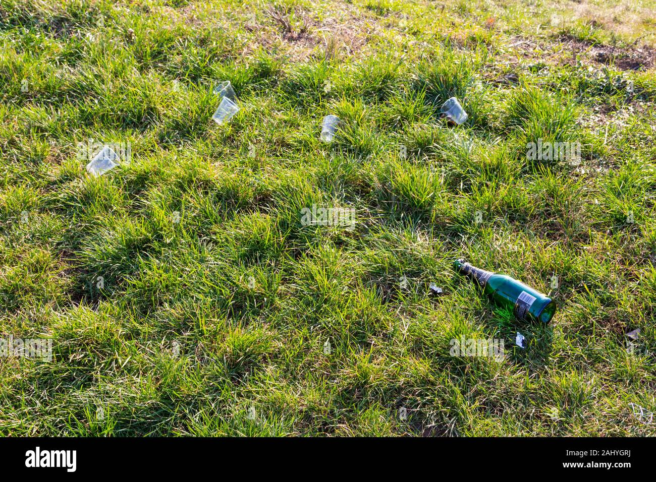 Empty bottle of champagne and plastic disposable single use glasses on grass after new years eve party Stock Photo
