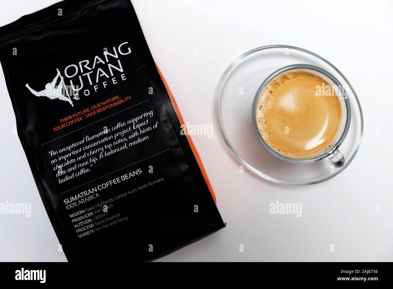 Orang Utan coffee Stock Photo