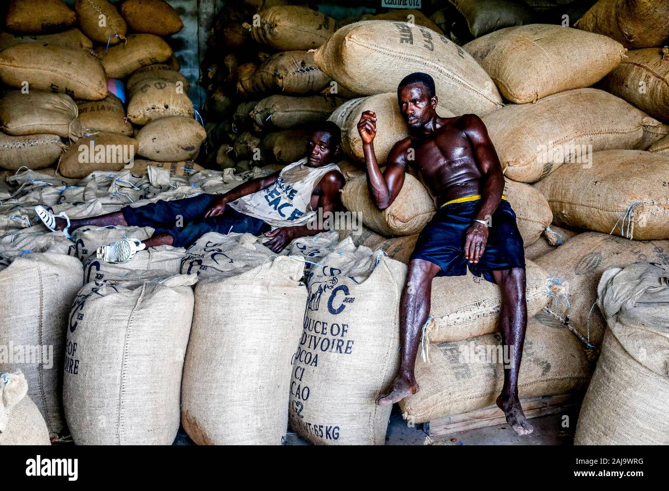 Cocoa workers resting in agboville, ivory coast Stock Photo