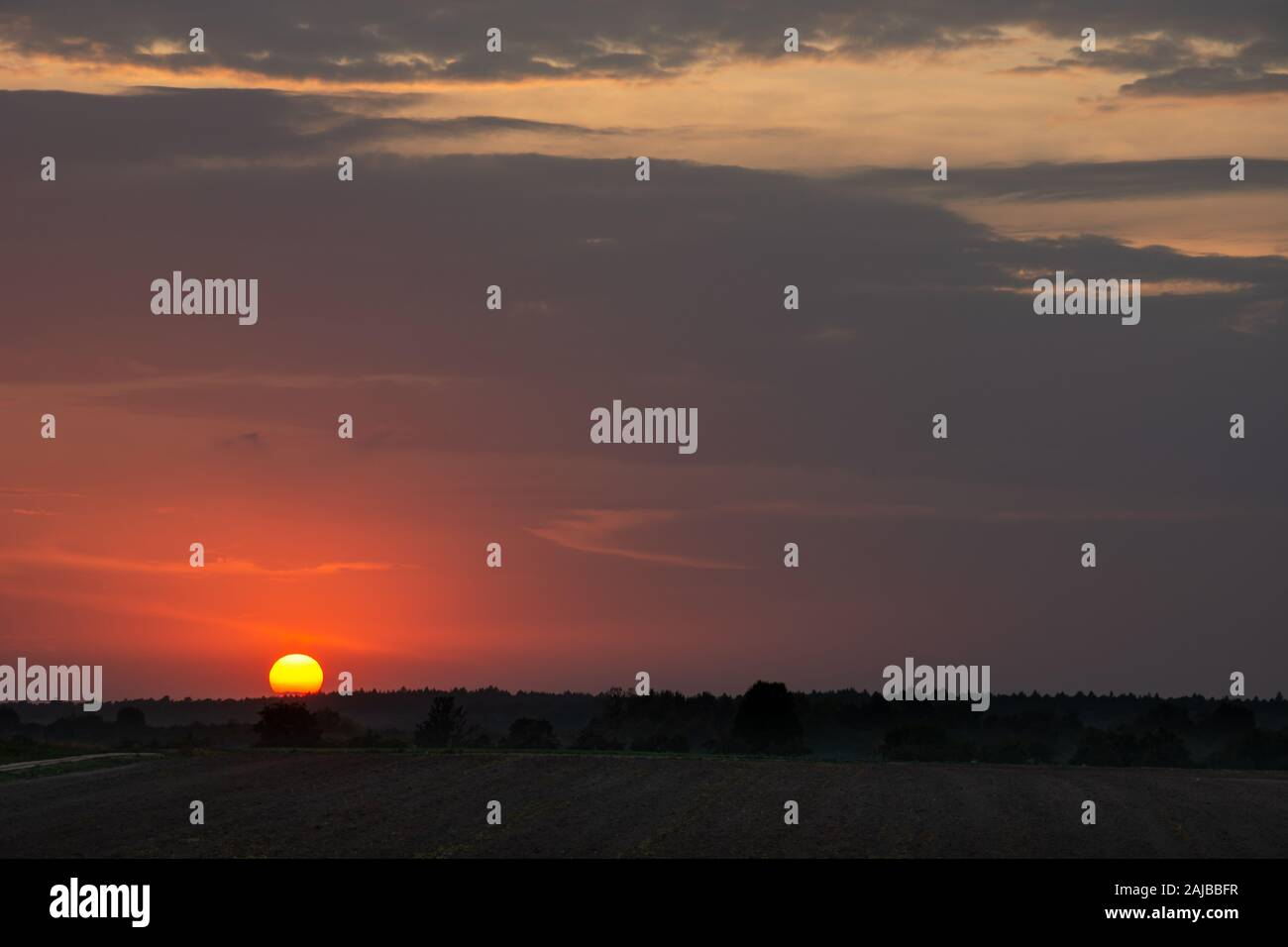 Beautiful Purple Sunset With Clouds Above The Horizon Stock Photo Alamy