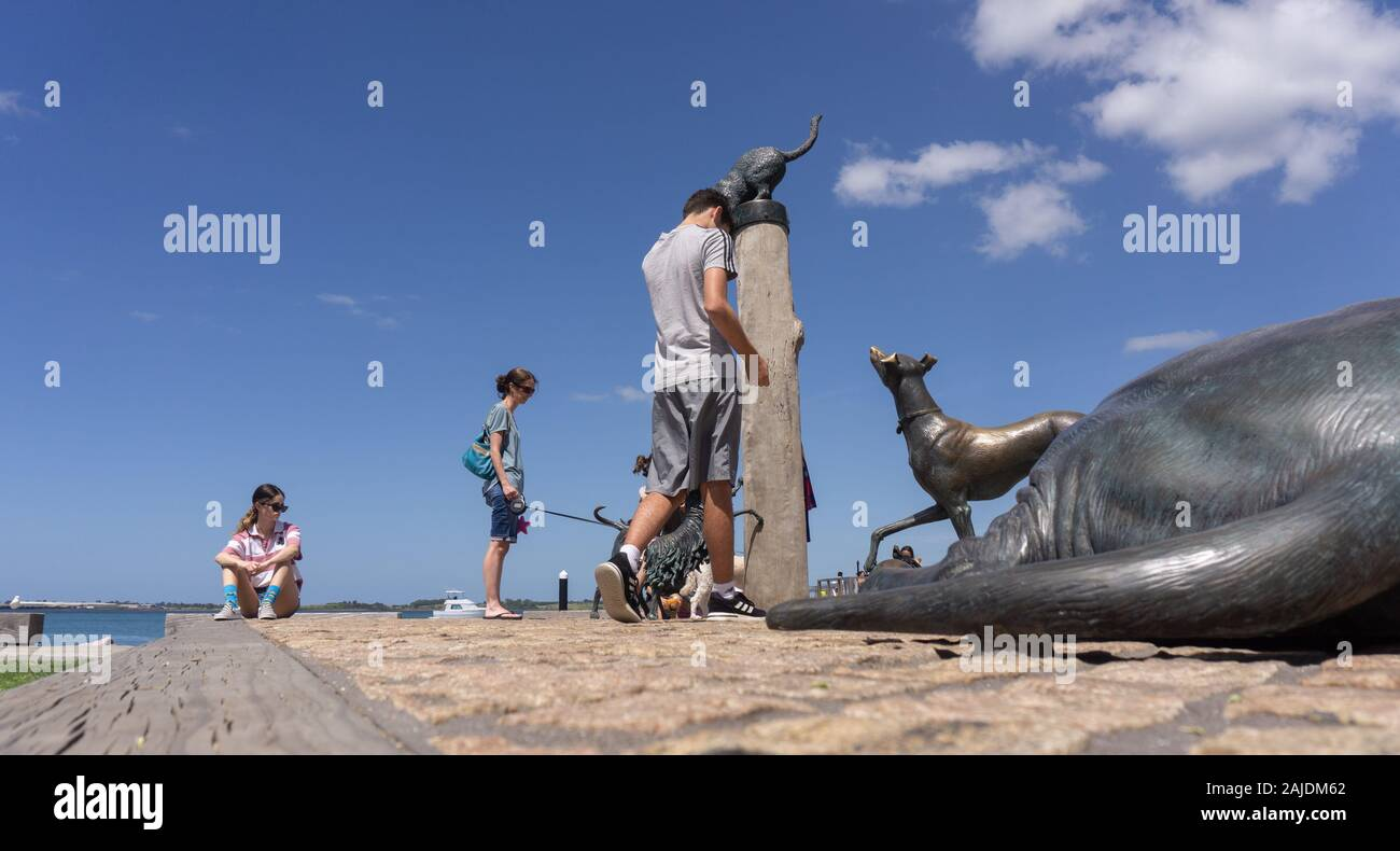 Tauranga New Zealand - December 19 2019; Mother and children of family interacting with Hairy Maclary and Friends Sculpture park statues by sculptor B Stock Photo