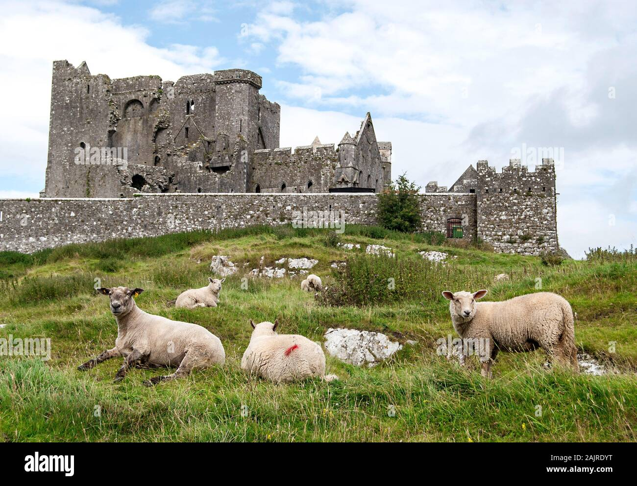 Rock of Cashel - Heritage Ireland