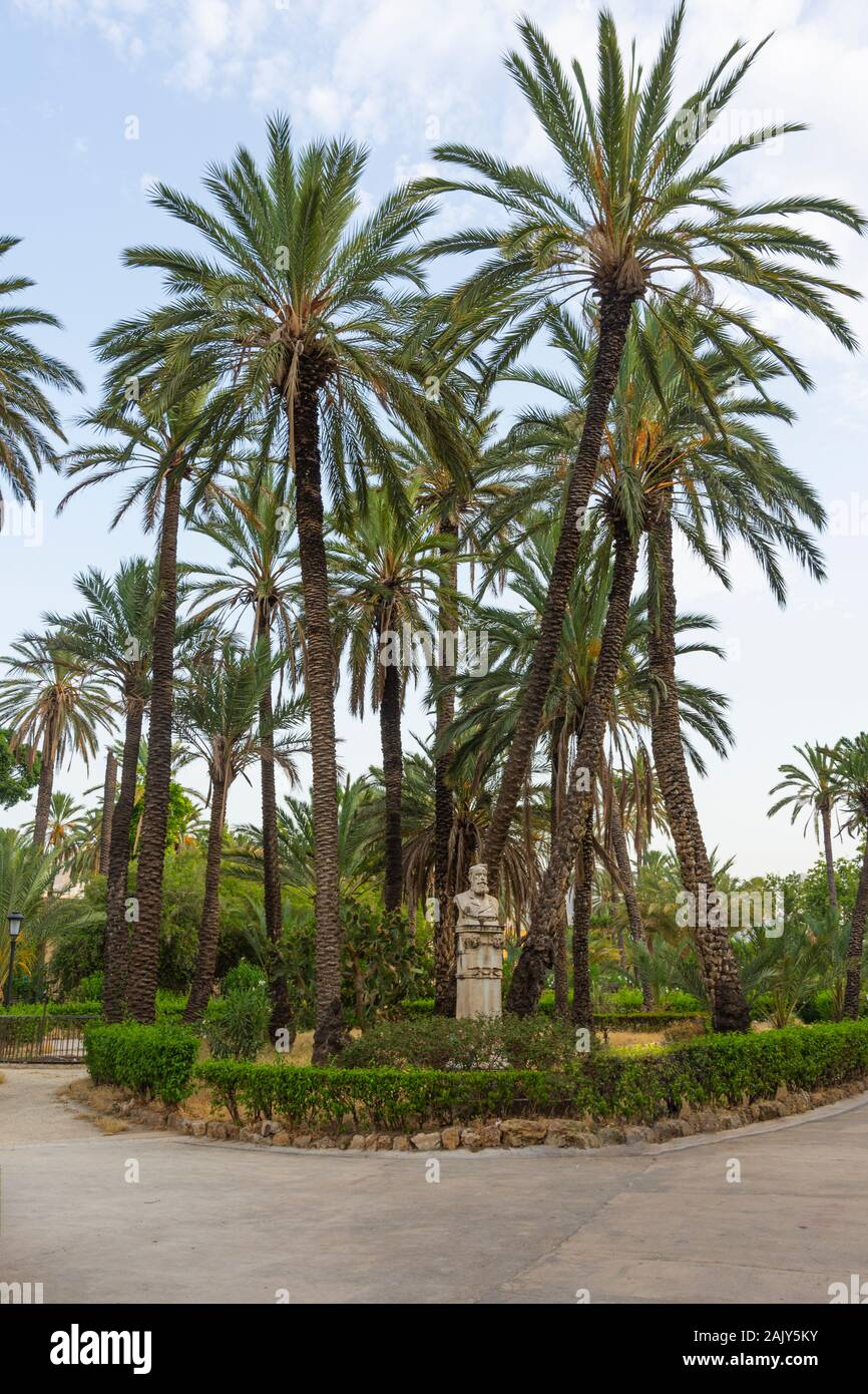 coconut-palms-tropical-park-in-palermo-s