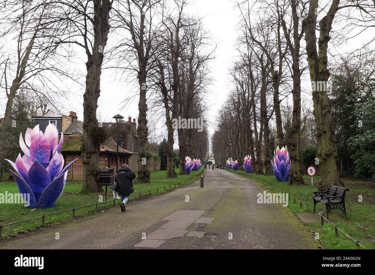 london uk 06th jan 2020 chiswick house prepares for lightopia festival due to open 22 january 2020 and will run until 01 march 2020 lightopia festival combines light displays water displays and acrobats credit peter hoganalamy live news 2AK062N - Lightopia Chiswick House And Gardens 22 January