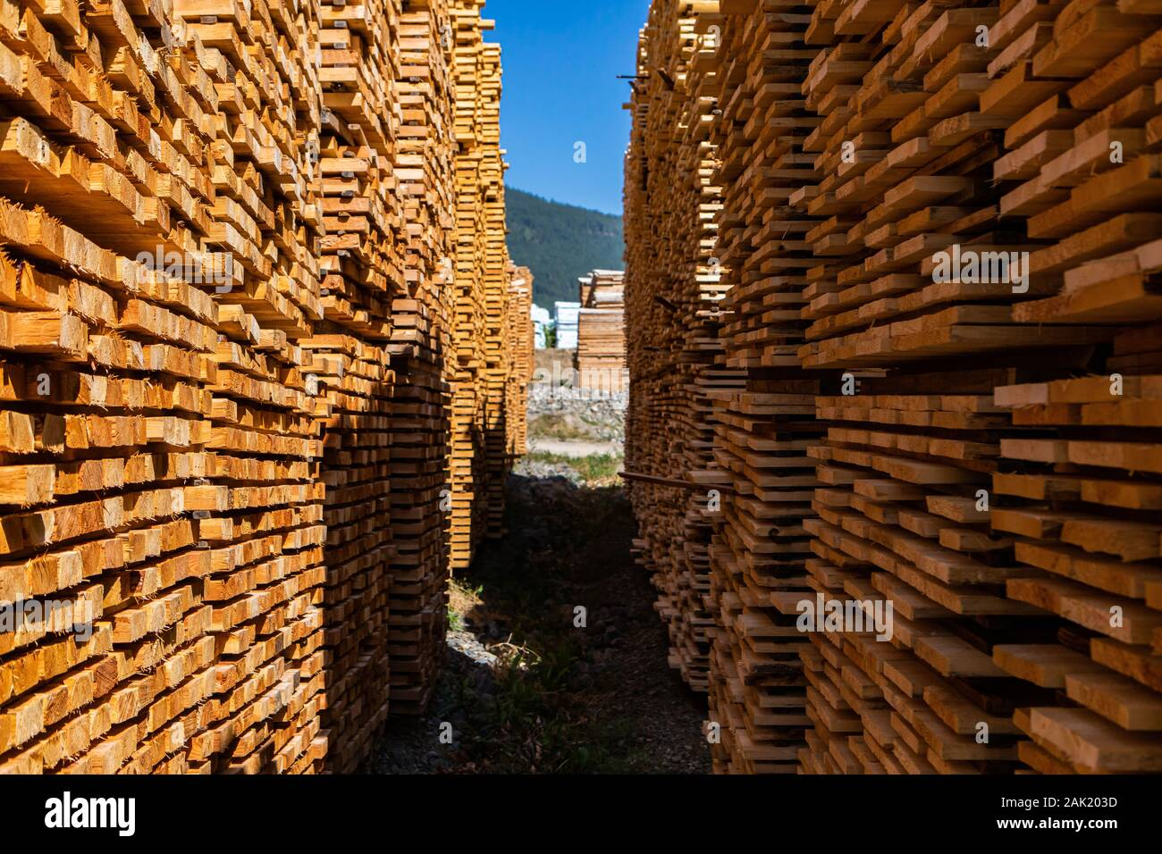 how to make an outdoor bamboo privacy screen woodworking.htm manufactured wood stock photos   manufactured wood stock images  manufactured wood stock photos