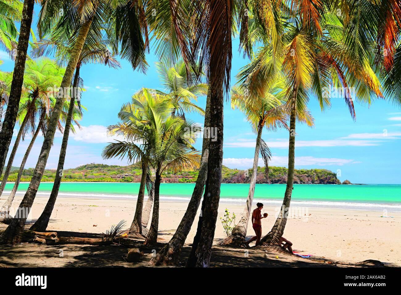 Guanacaste: Palmenstrand an der Playa Carillo, Costa Rica | usage worldwide Stock Photo