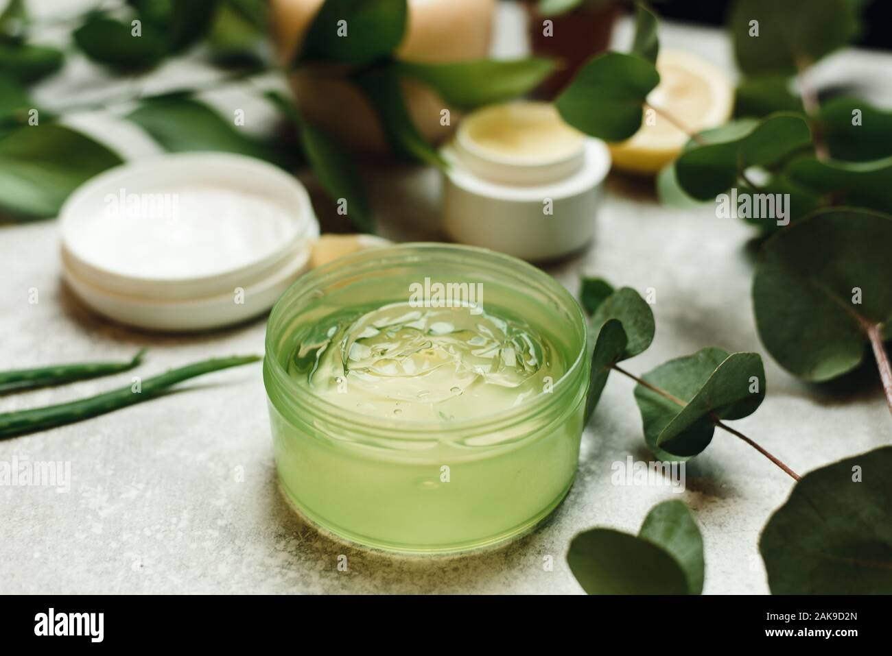 A Can Of Aloe Gel Next To An Aloe Branch And Eucalyptus Leaves The Concept Of Skin Care Love For Your Body Natural Ingredients Background With Nat Stock Photo Alamy