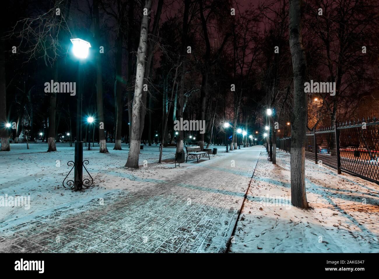 Fallen Snow S.