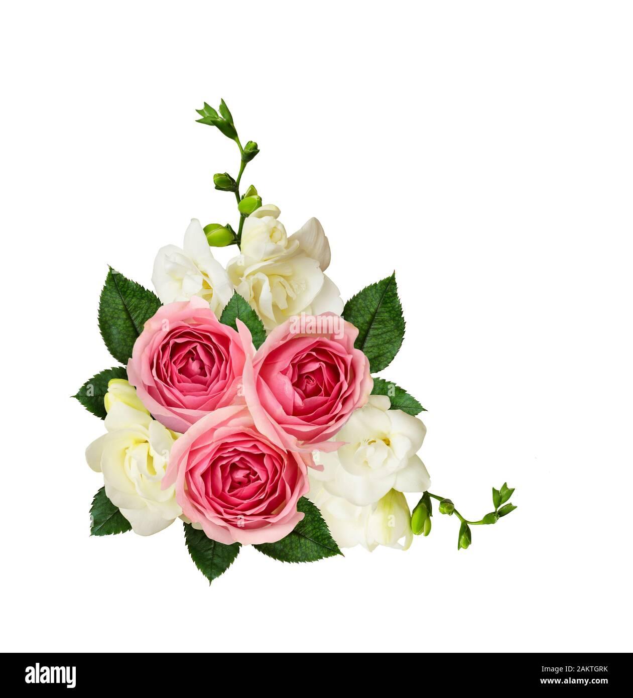 25 PEACHY CREAM FLAT ROSEBUDS 25 PEACH//WHITE ROSES COLLECTION