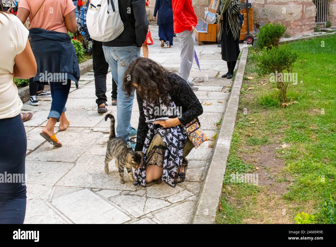 A female tourist with a cat scarf on stops to pet a stray cat at the Hagia Sophia museum in Istanbul, Turkey. Stock Photo