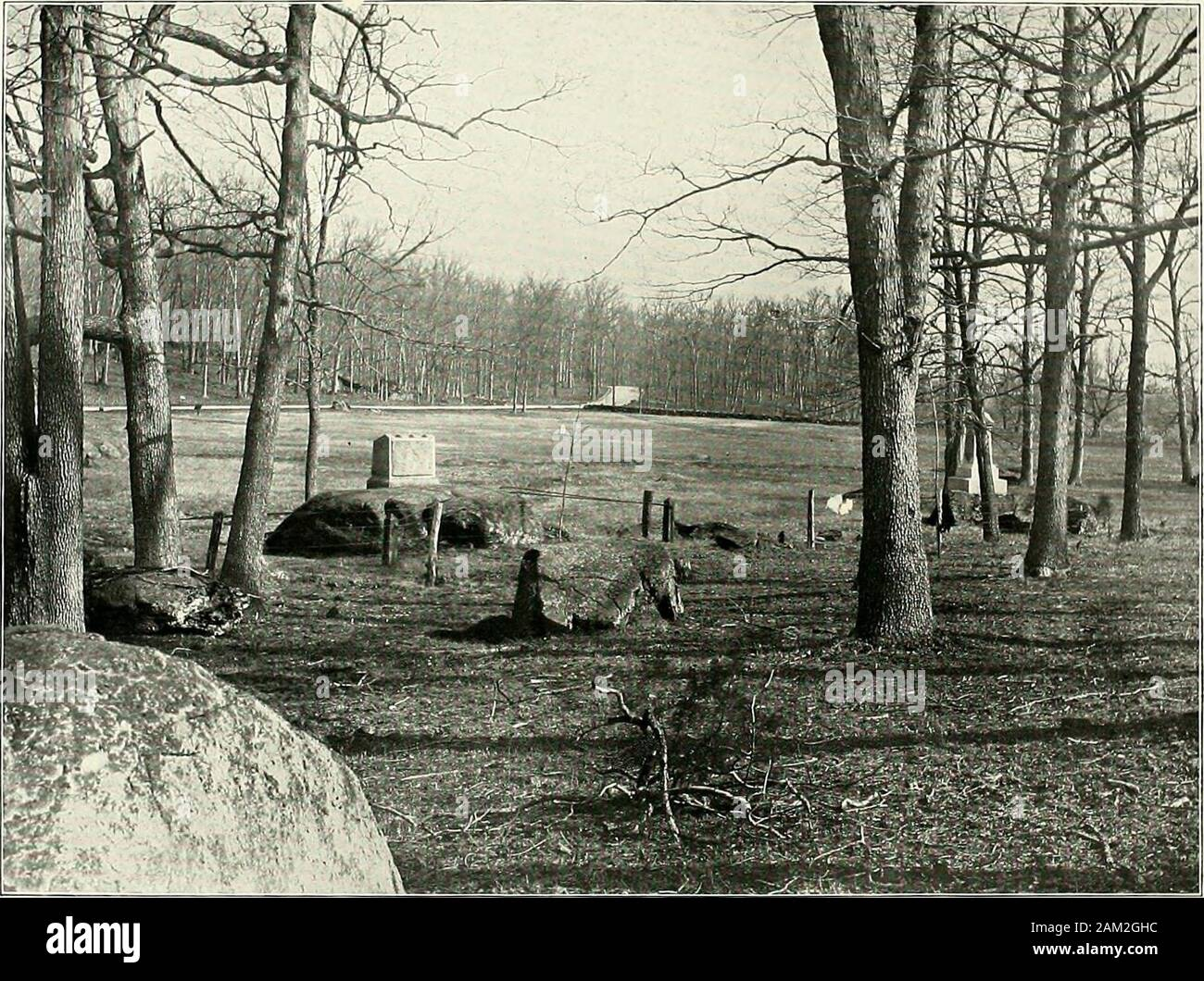 6 Sizes! New Civil War Photo Gettysburg Woods Occupied by Johnson/'s Forces
