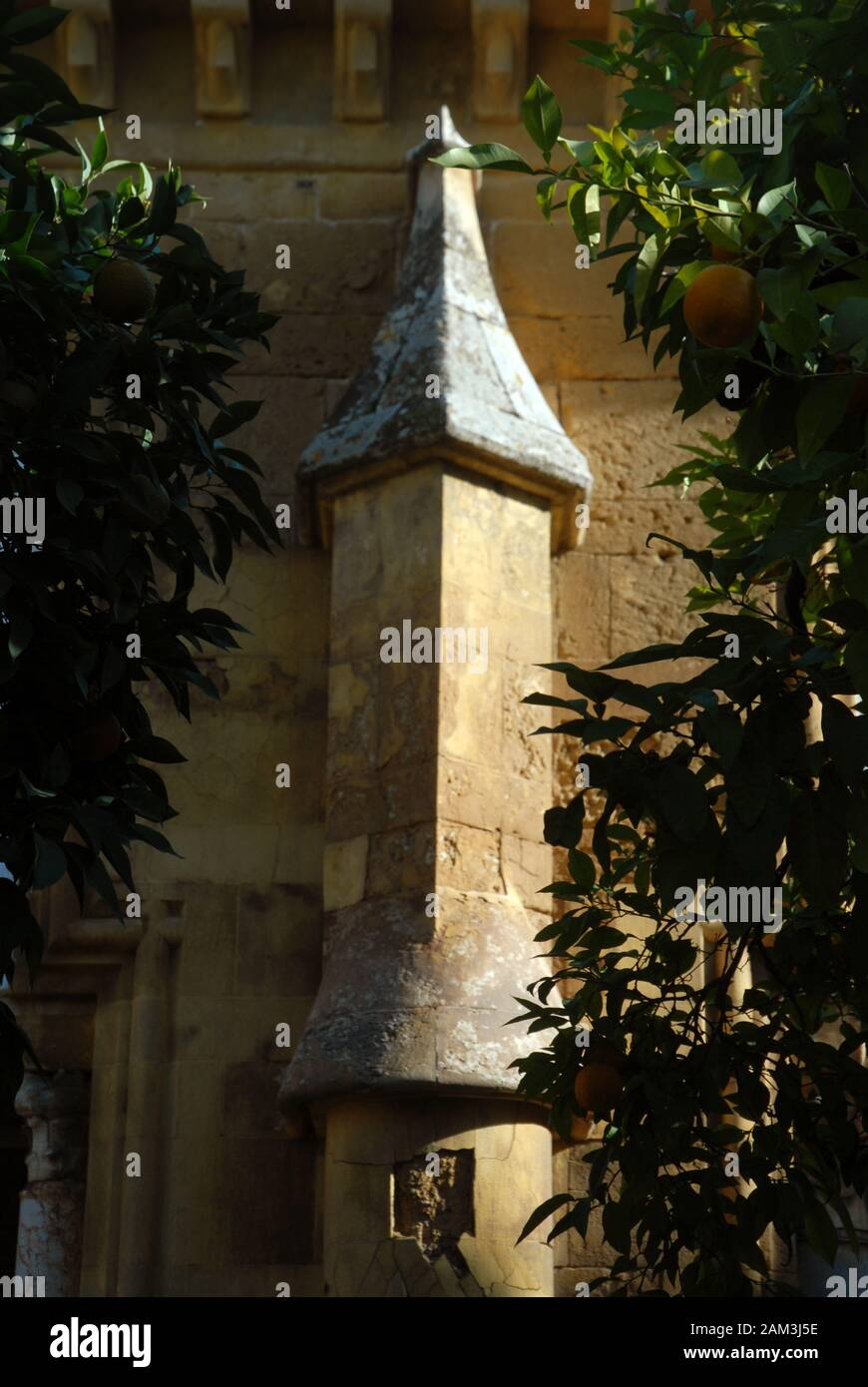 Courtyard of the Orange Trees of the Great Mosque of Cordoba, Spain Stock Photo