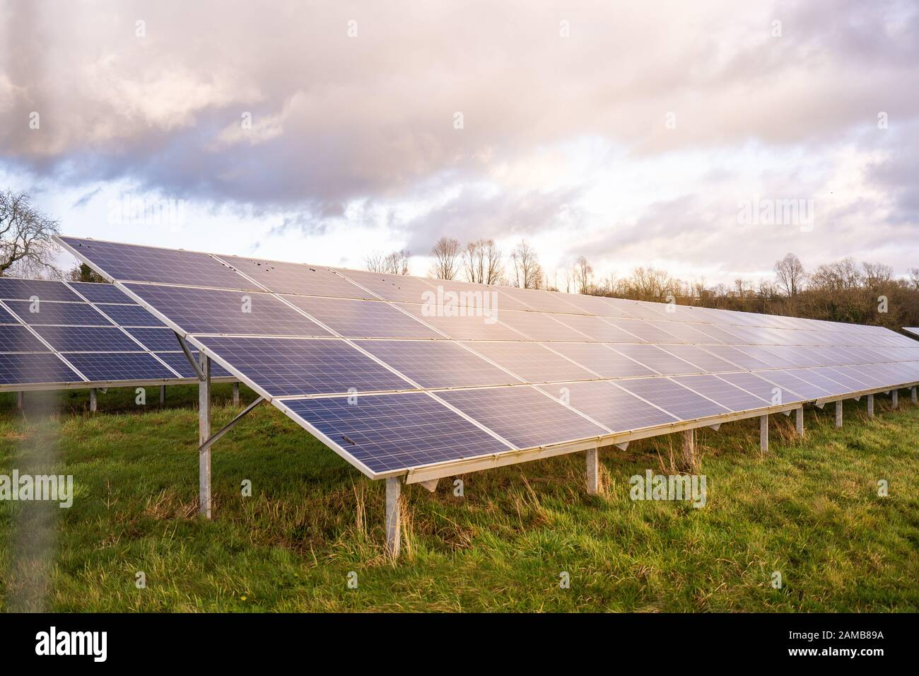 Ground view of a solar farm in Staffordshire, renewable, sustainable energy due to climate change, natural energy Solar panels in the countryside Stock Photo