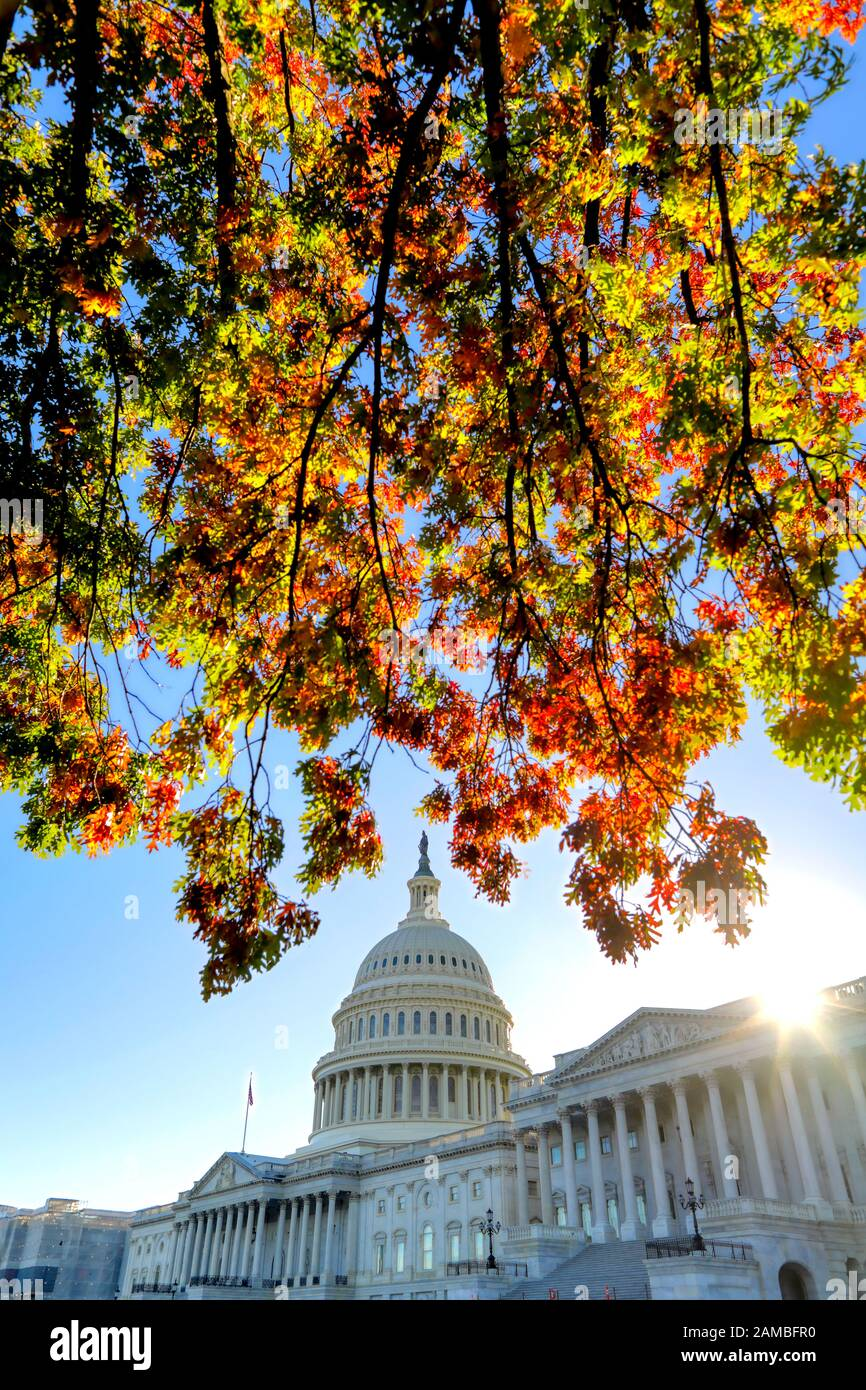 The United States Capitol Building in Washington, DC. Stock Photo