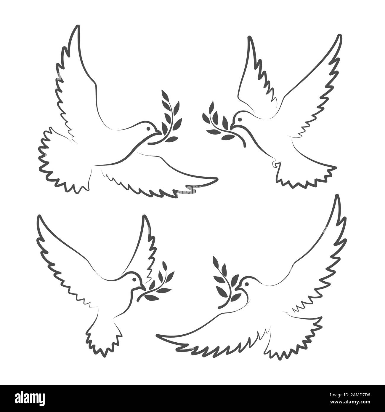 White Doves With Olive Branch Stock Vector Image Art Alamy