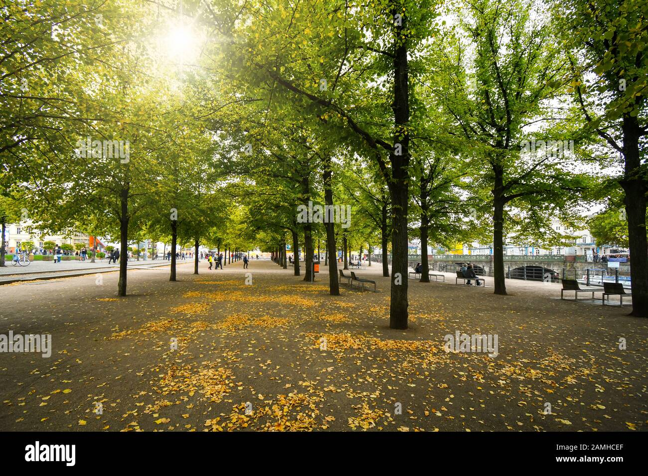 Tourists and local Germans relax under the shade of rows of trees at the Lustgarden park alongside the Spree River in autumn at Berlin Germany Stock Photo