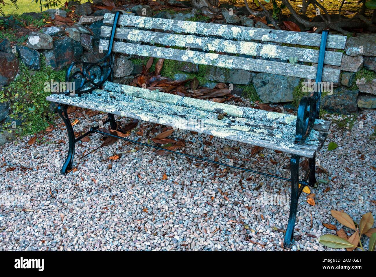 Garden Bench Seat With Black Painted Metal End Supports And Wooden Slats Which Are Covered In Lichen Standing On Gravel Cornwall Uk Stock Photo Alamy