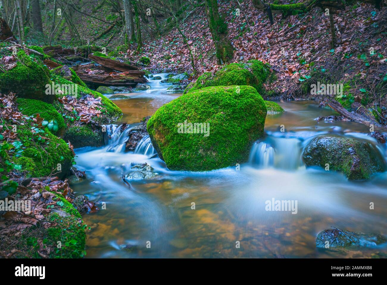 Green landscape with small river in the forests Stock Photo