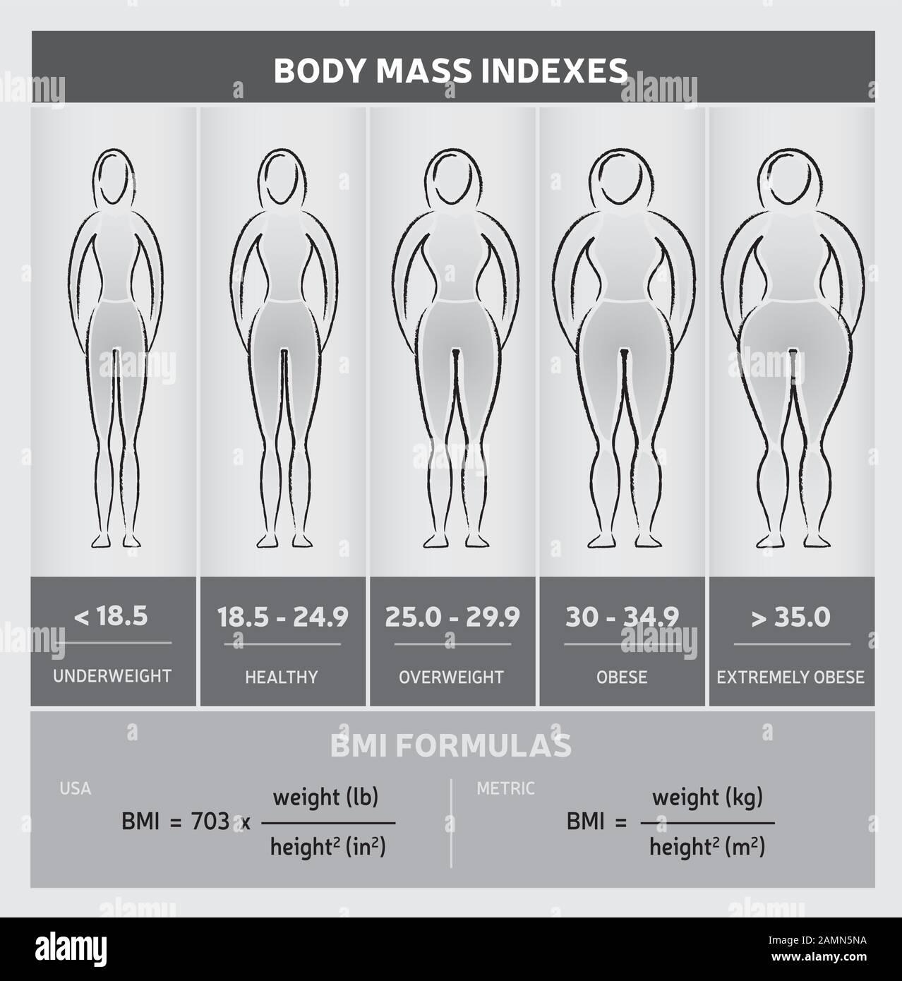 Female bmi 22 Body Mass