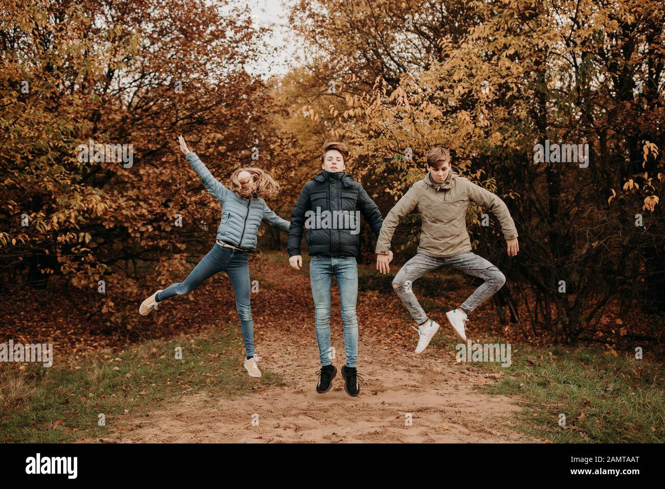 Three children in an autumn woodland jumping in the air, Netherlands Stock Photo