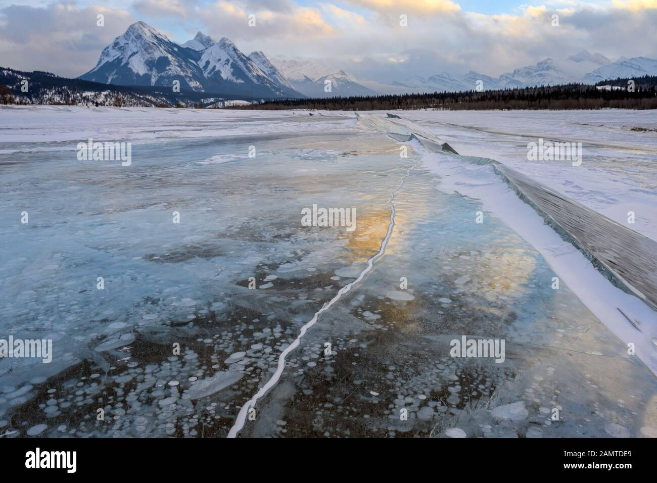 Trapped methane bubbles frozen into the water under the thick cracked and folded ice on Abraham Lake Stock Photo